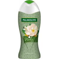 Гель для душу Північні Обійми Palmolive, 250 ml (Німеччина)